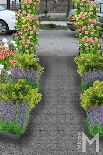 Projekt ogrodu przydomowego w luźnym stylu
