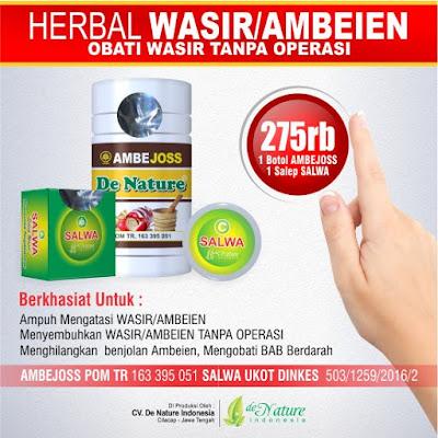 paket obat herbal untuk penyakit wasir atau ambeyen