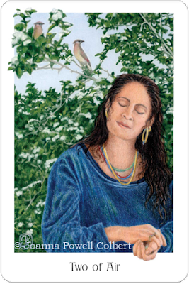 Gaian Tarot Two of Air Joanna Powell Colbert