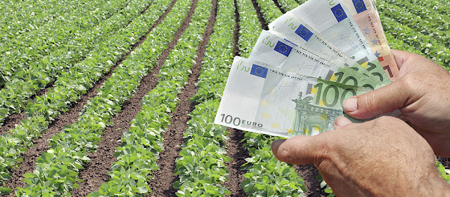 Στα 8.535.863,57 η αυριανή πληρωμή αποζημιώσεων του ΕΛ.Γ.Α. για την Φυτική Παραγωγή και το Ζωικό κεφάλαιο