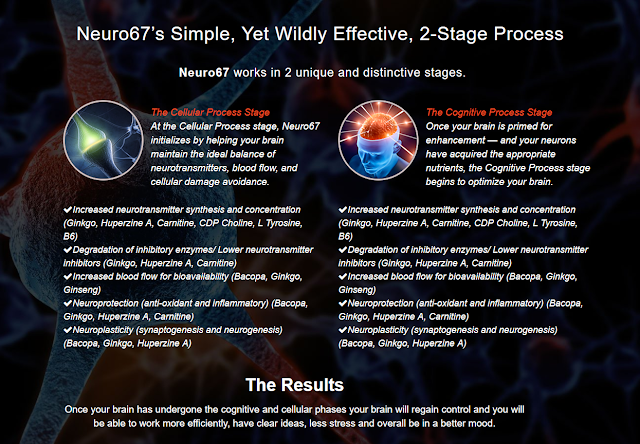 Upgrade Your Brain Functions with Neuro67