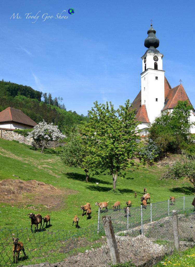 Engelhartszell, Austria | Ms. Toody Goo Shoes #austria #danuberivercruise #engelhartszell
