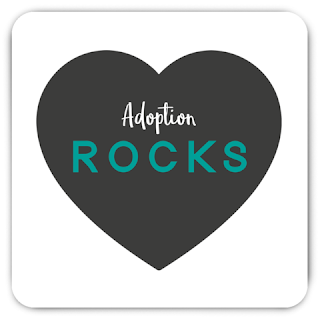 https://adoptiongifts.com/products/adoption-rocks-magnet-adoption-gifts-decor