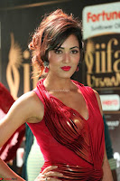 Videesha in Spicy Floor Length Red Sleeveless Gown at IIFA Utsavam Awards 2017  Day 2  Exclusive 08.JPG
