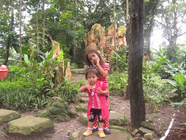 Liburan Asik Dengan Belajar Mengenal Binatang Di Kebun Binatang Surabaya