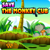 Avmgames Save The Monkey Cub