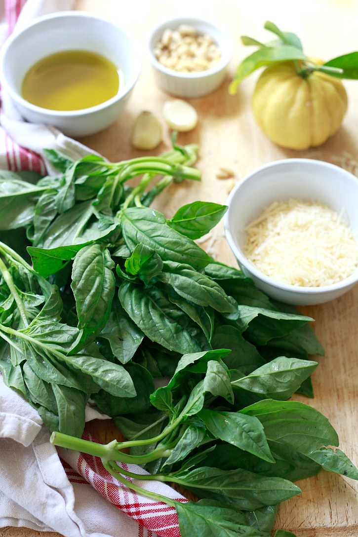 Pesto ingredients include a bunch of fresh basil, garlic, pine nuts, Parmesan, and olive oil.