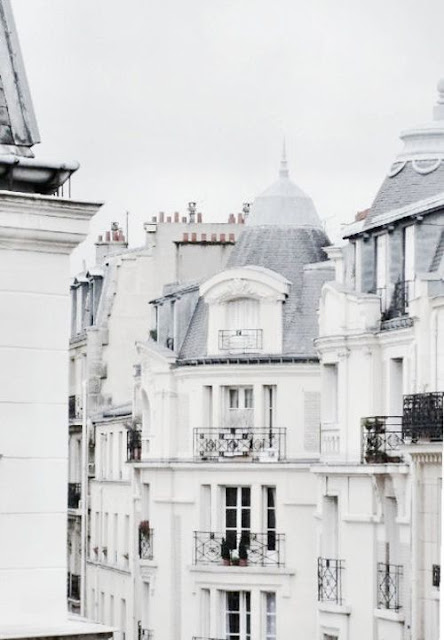 Parisian rooftops white buildings