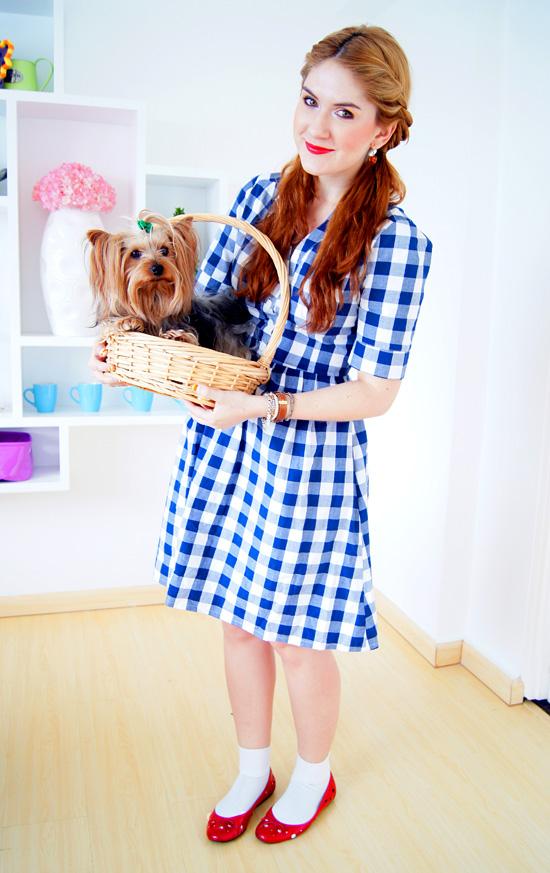 Easy Homemade Dorothy Costume Tutorial for Halloween