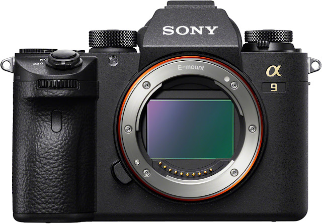 The Sony a9 Mirrorless Camera for Professional Photographers