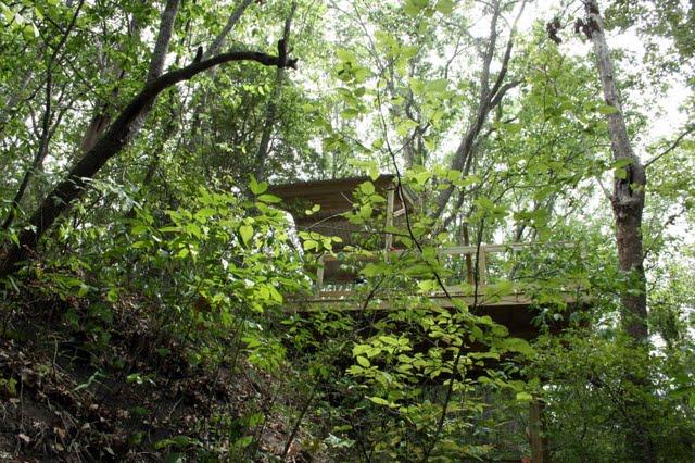 Creekside Deck Cedar Hill Farmhouse