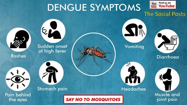 7 warning signs of dengue fever