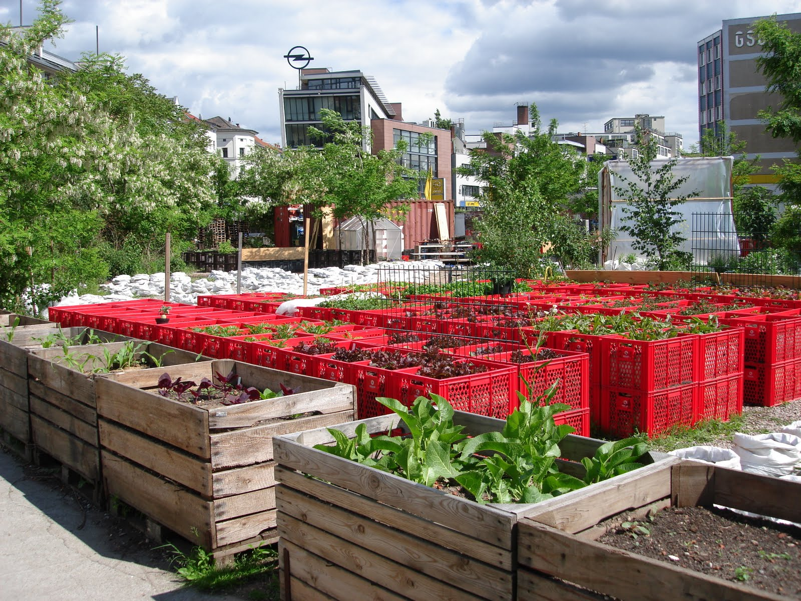 neuk lln goes country urban farming urbane. Black Bedroom Furniture Sets. Home Design Ideas