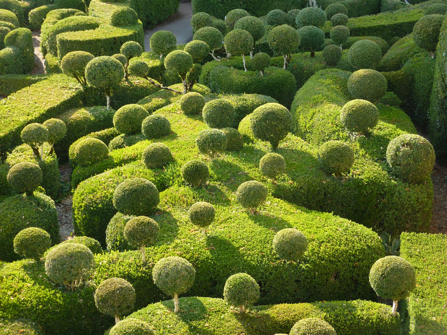 meabh warburton les jardins suspendus de marqueyssac. Black Bedroom Furniture Sets. Home Design Ideas