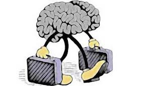 Beyin Göçü Nedir? Kısaca