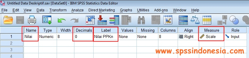 Variable View Uji Statistik Deskriptif SPSS