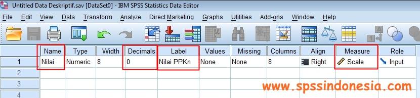 Statistik deskriptif dalam spss dibagi menjadi 7 submenu utama yaitu : Cara Melakukan Uji Statistik Deskriptif Dengan Software Spss Spss Indonesia