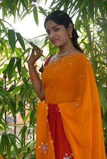 Keerthi Saree Pictures