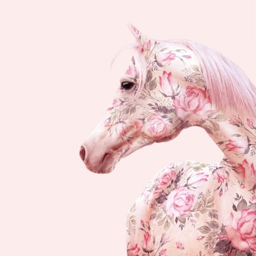 """Floral Horse"" imágen por Paul Fuentes 
