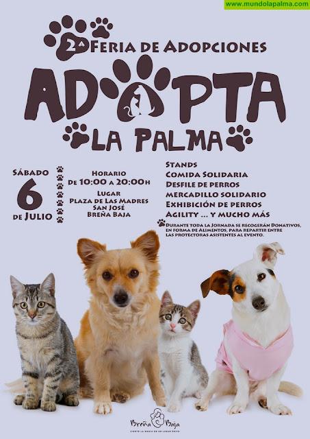 """BREÑA BAJA: II Feria """"Adopta La Palma"""""""