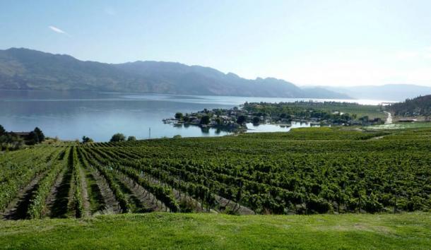 Región del Vino canadiense del Valle de Okanagan en la Columbia Británica.