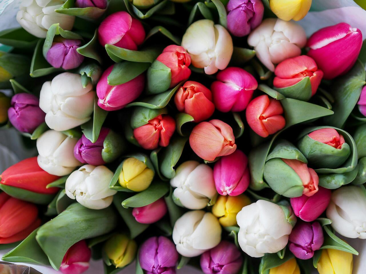 Happy birthday flowers flowers for birthday wishes love happy birthday flowers flowers for birthday izmirmasajfo