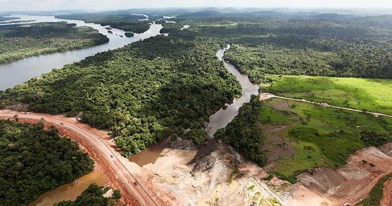 In venti anni perso il 30% della foresta amazzonica; il 10% delle aree naturalistiche nel mondo intero
