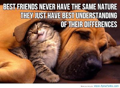 very special quotes on friendship සඳහා පින්තුර ප්රතිඵල