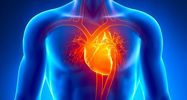 أعراض تدل على ضعف عضلة القلب.؟