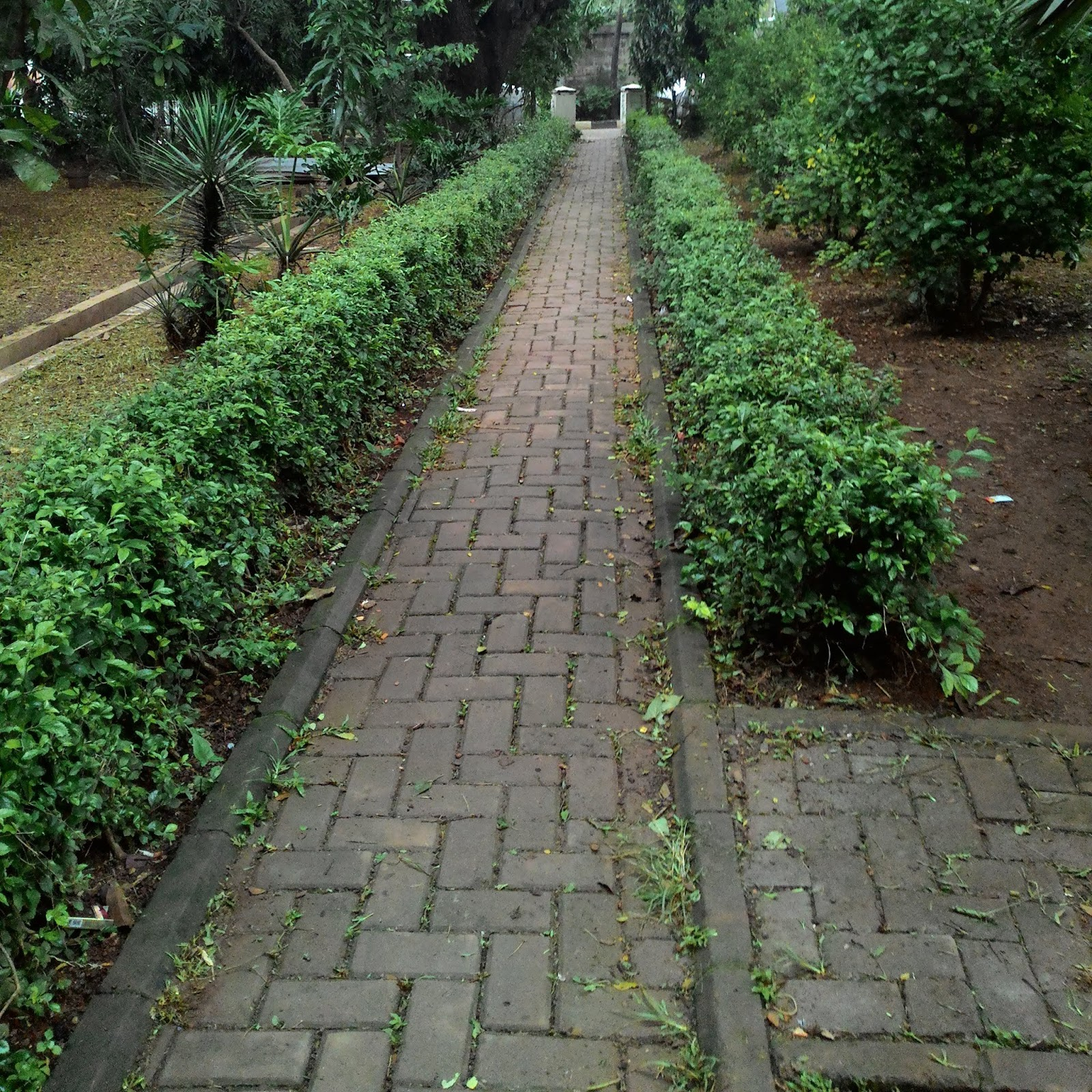 Simple Walkway Design To Decorate The Tropical Garden