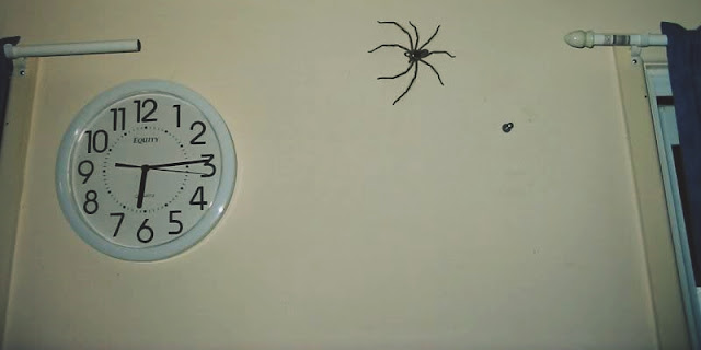 The Spider and the Clock