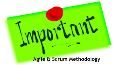 Importance of Agile and Scrum Methodology