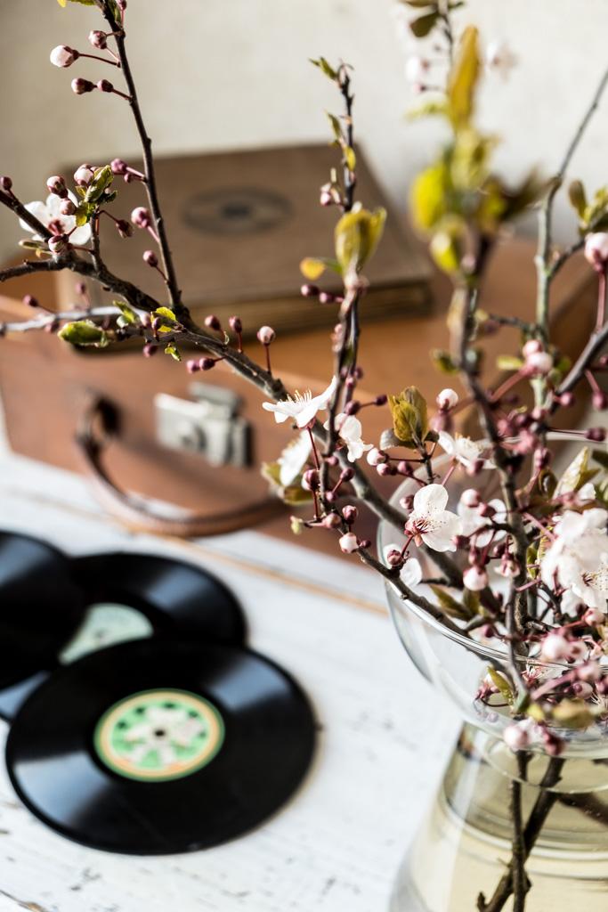www.fim.works | Fotografie. Wortakrobatik. Wohngefühl. | Lifestyle Blog | Bluftpflaume in der Vase