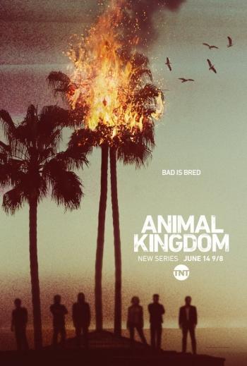 Baixar Animal Kingdom 1ª Temporada Dublado e Legendado