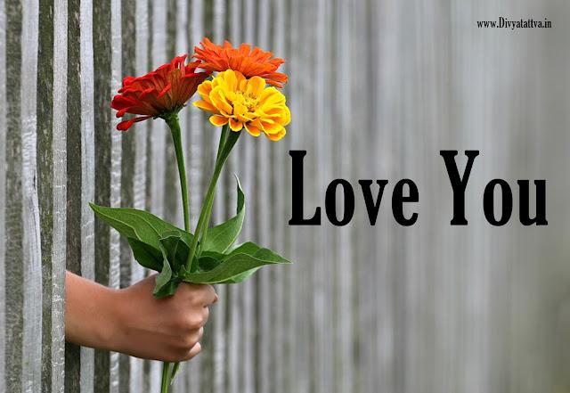 i love you wallpaper, loving flowers, proposing love hd photos, desktop love wallpaper backgrounds