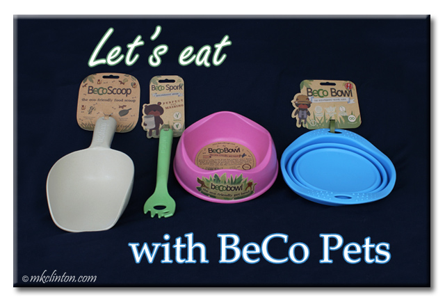 Let's eat with BeCo Pets meme featuring a scoop, spork, bowl and travel bowl