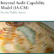 Issues in IACM (Internal Audit and Capabilty Model) | Internal Auditor's Corner