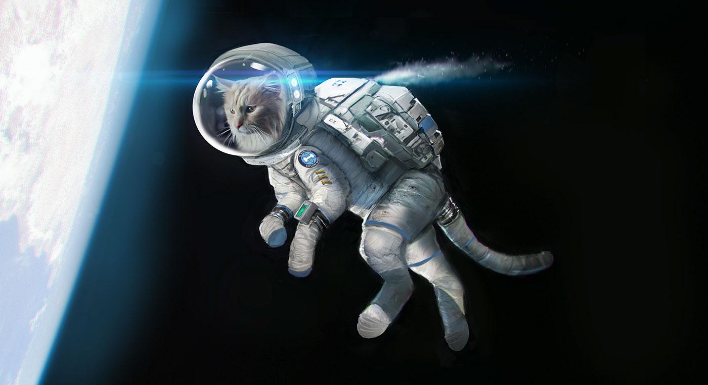 elephant astronaut - photo #39