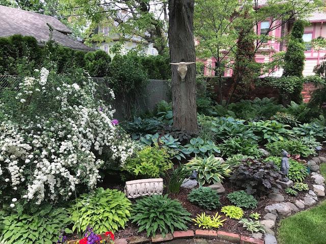 my neighbor 39 s garden. Black Bedroom Furniture Sets. Home Design Ideas