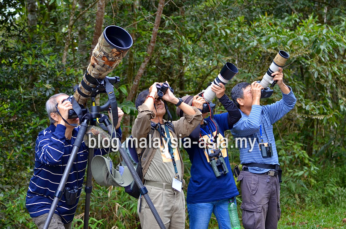 Malaysia, a Preferred Bird Watching Destination'