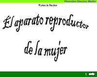 http://cplosangeles.juntaextremadura.net/web/edilim/tercer_ciclo/cmedio/las_funciones_vitales/la_funcion_de_reproduccion/el_aparato_reproductor_de_la_mujer/el_aparato_reproductor_de_la_mujer.html