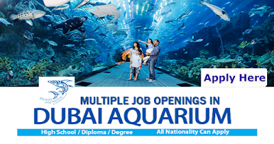 Latest Jobs At Dubai Aquarium
