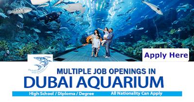 Latest Jobs At Dubai Aquarium