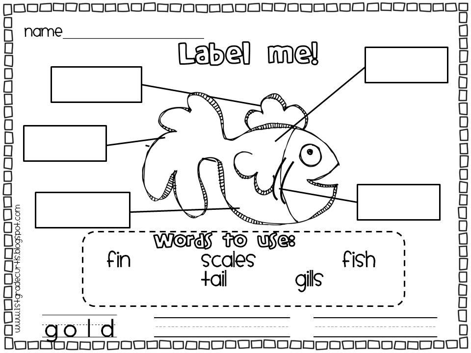 FREE 1st Grade Spelling Worksh...
