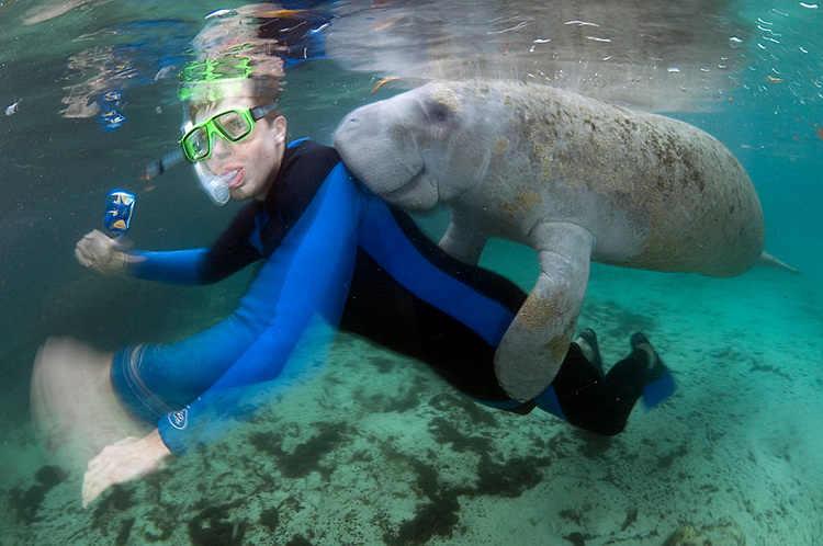 Descubre Tu Mundo Destino Nadando Con Los Manat 237 Es En