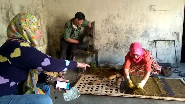Ritual Potong Rambut Gimbal Dieng