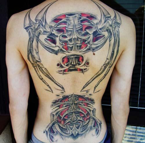 biomechanical spine drawings - photo #28