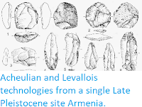 https://sciencythoughts.blogspot.com/2014/10/acheulian-and-levallois-technologies.html