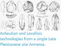 https://sciencythoughts.blogspot.com/2014/10/acheulian-and-levallois-technologies.html