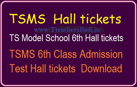 Telangana Model School Hall Ticket 2019 | TSMS 6th, 7th, 8th, 9th Class Entrance HallTickets
